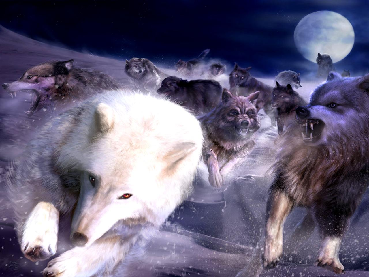 wolf-fantasy-wolves-a-page-images-140925