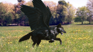 __winged_black_wolf___by_darktwilightangel.png
